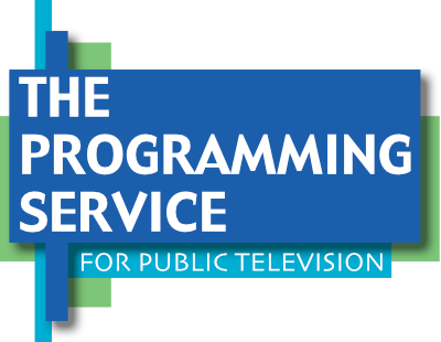 The Programming Service Logo
